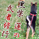 ren_banner_f.jpg